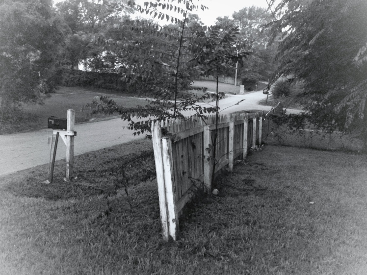 black and white fence